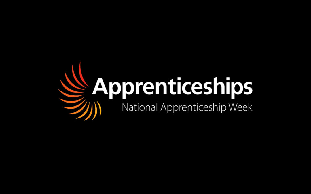 An insight into my experience as an apprentice